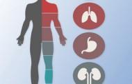 آدرس پزشکان فوق تخصص داخلی غدد روماتولوژی ریه آسم آلرژی قم